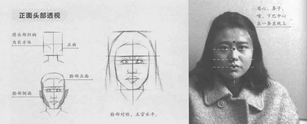 画素描中熟悉不同角度下的头部透视